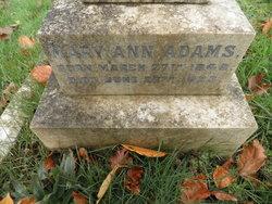 Mary Ann <I>Froggath</I> Adams
