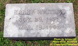 Harry Whitney