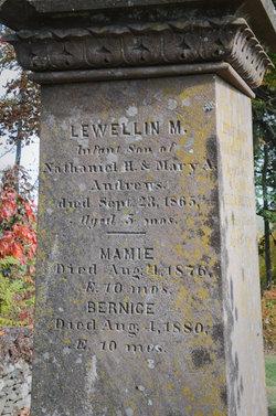 Lewellin M Andrews