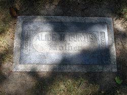 Alice H Curtis