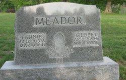 Fannie Seaton <I>Hire</I> Meador