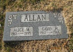 Alice M Allan