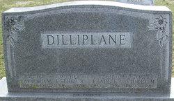 Esther V <I>Meck</I> Dilliplane