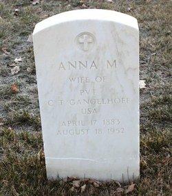 Anna M Gangelhoff