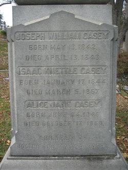 Alice Jane Casey