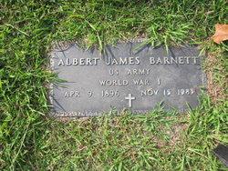 Albert James Barnett