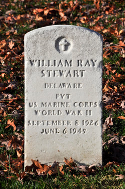 William Ray Stewart