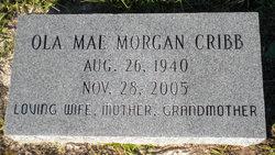 Ola Mae <I>Morgan</I> Cribb
