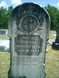 """Elizabeth S. """"Betsy"""" <I>Gay</I> Wilkes"""