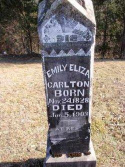 Emily Eliza <I>Hull</I> Carlton