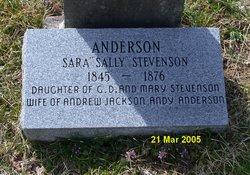 "Sarah Jane ""Sallie"" <I>Stephenson</I> Anderson"