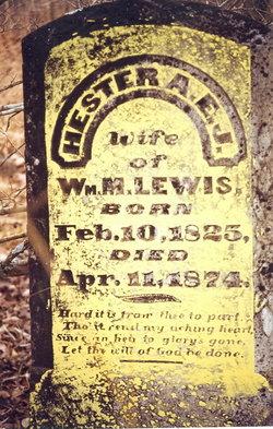 Hester Ann Elizabeth <I>Reynolds</I> Lewis