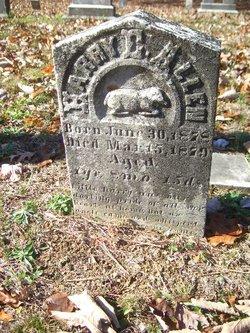 Harry E. Allen