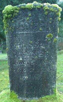 Melissa L Jaynes