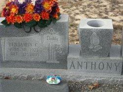 Benjamin C Anthony