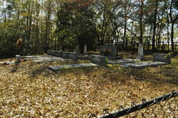 Johnson Cemetery #1