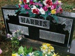 Viola <I>Mace</I> Harris