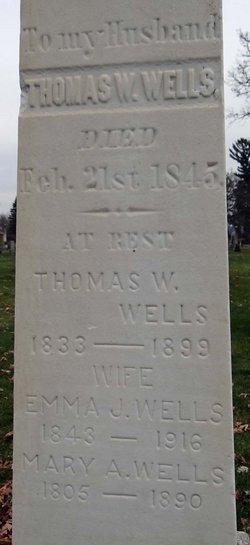 Mary Ann <I>Steel</I> Wells