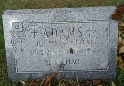 June A. <I>Whalley</I> Adams