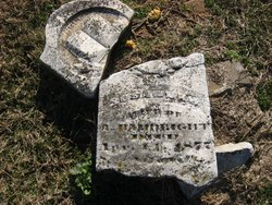 Susannah <I>Hambright</I> Hambright