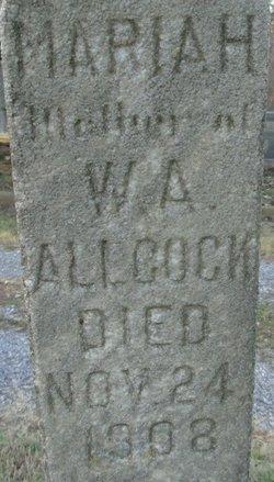 Mariah Allcock