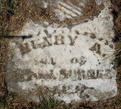Henry A. Burner