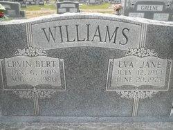 Mary Eva Jane <I>Moats</I> Williams