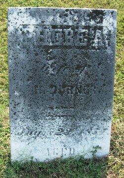 Phebe Ann <I>Kirk</I> Burner