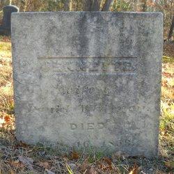 Jennette <I>Chamberlain</I> Whitman