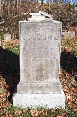 Abraham Perkins Burnham
