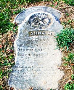Anna M. Umbach