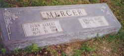 John Albert Mercer