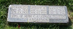 Joseph Henry Anderson