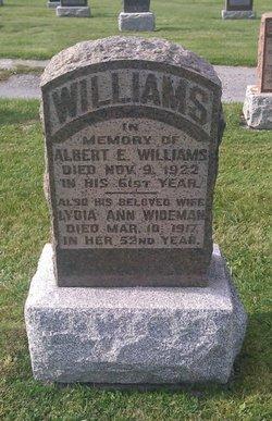 Lydia Ann <I>Wideman</I> Williams