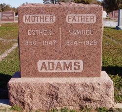 Samuel M Adams