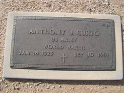 Anthony J Curto