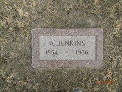 Anton Jenkins