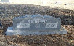 Jesse Snead Hicks