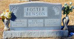 Mamelia Lee <I>Camden</I> Benson