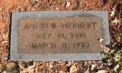 Andrew Herbert
