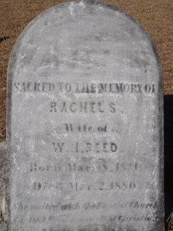Rachel S Reed