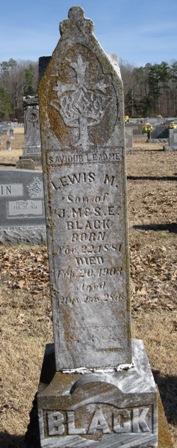 Lewis M Black