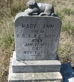 Mary Ann Robuck