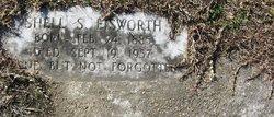 Shell Stevens Eisworth