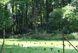 Gowanda State Hospital Cemetery