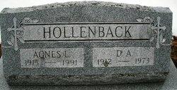 Agnes Johanna <I>Lynch</I> Hollenback