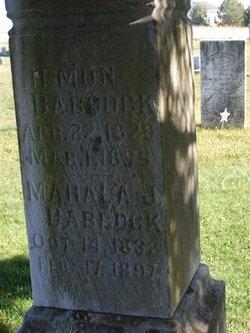Mahala Jane <I>Spencer</I> Babcock