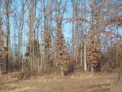 Brushy Fork Cemetery