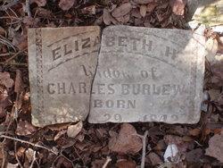 Elizabeth Harriet <I>Strickland</I> Robbins