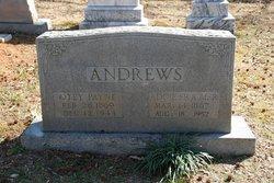 Addie Idella <I>Frazier</I> Andrews